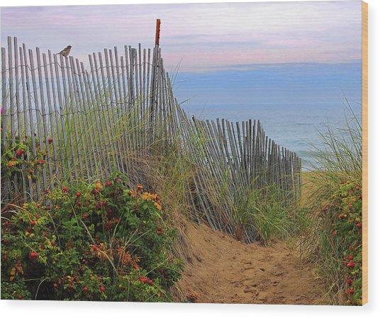 Salisbury Beach Wood Print