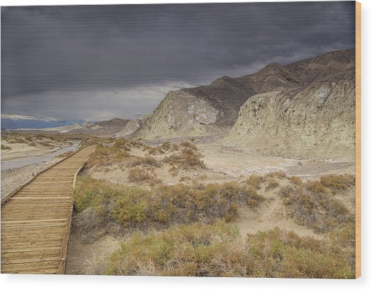 Salt Creek Trail Wood Print