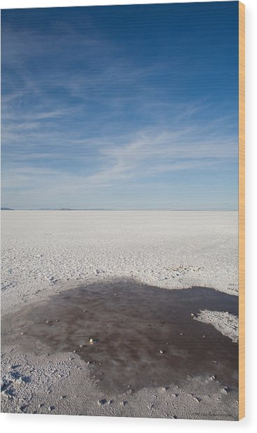 Salt Flats Wood Print by Luigi Barbano BARBANO LLC