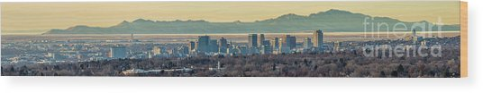 Wood Print featuring the photograph Salt Lake City With Antelope Island by Spencer Baugh