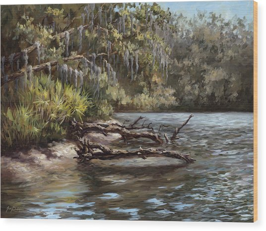 Salt Springs Run Wood Print