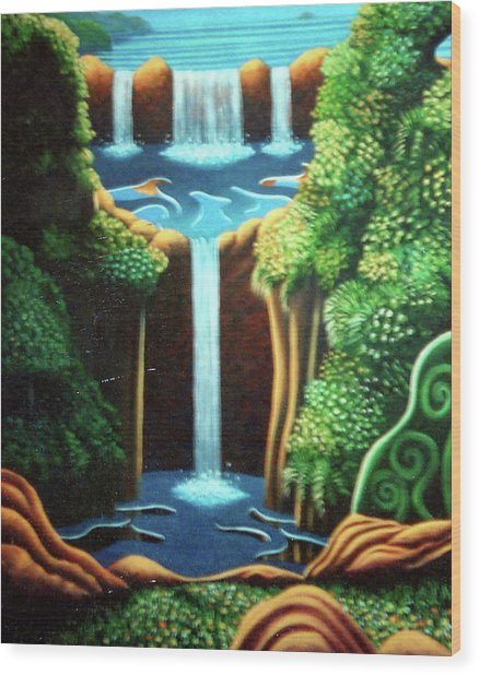 Saltwater Falls 3 Wood Print by Barbara Stirrup
