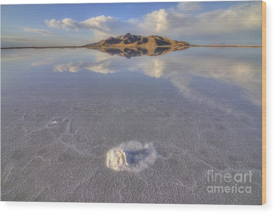 Salty Reflection Wood Print