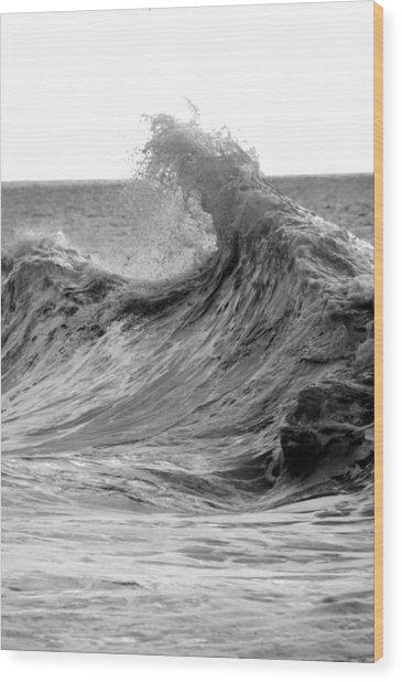 Samarai Wood Print by Brad Scott