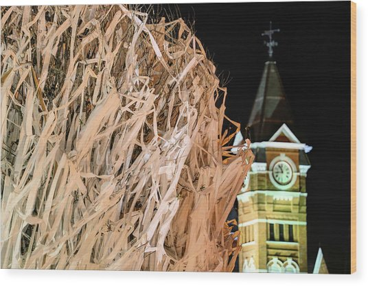 Samford Hall And Rolling Toomer's Wood Print by JC Findley