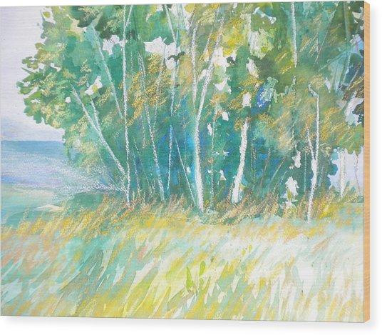 Sam's Gap Wood Print