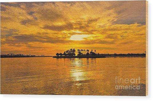 San Diego Golden Sky By Jasna Gopic Wood Print