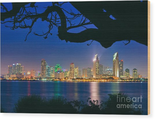 San Diego Skyline From Bay View Park In Coronado Wood Print