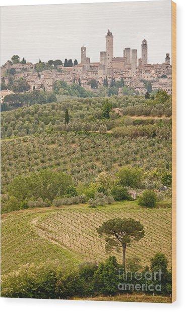 San Gimignano II Wood Print