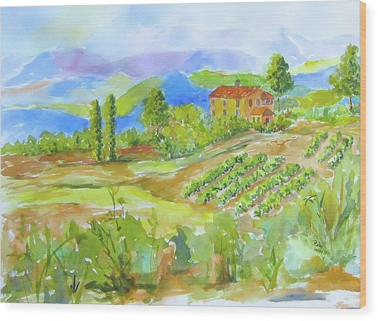 Vineyard At San Gimignano Wood Print