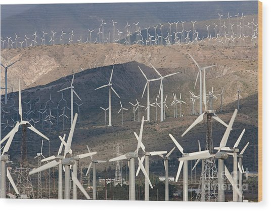 San Gorgonio Pass Wind Farm I Wood Print