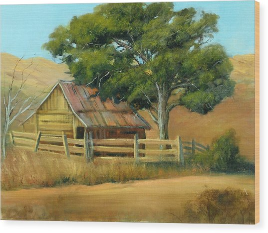 San Joaquin Barn Wood Print by Sally Seago