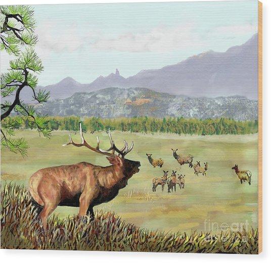 San Juan Elk Vista Wood Print