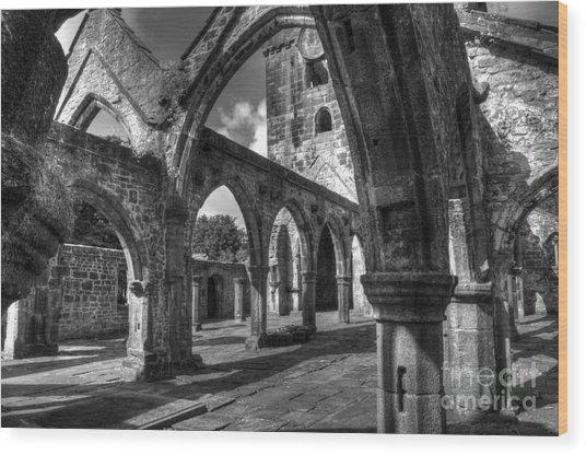 Sanctuarium Contritum Unum Wood Print by John Ellison