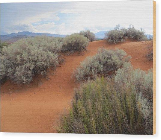 Sand And Sagebrush Wood Print
