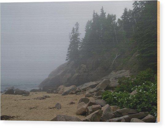 Sand Beach In A Fog Wood Print