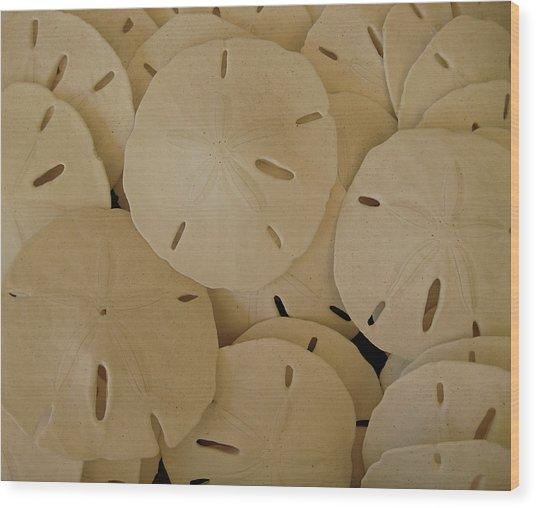 Sand Dollars Wood Print