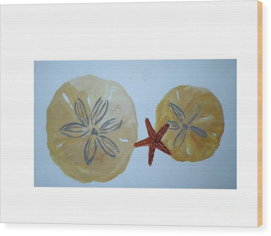 Sand Dollars With Star Fish Wood Print by Hal Newhouser