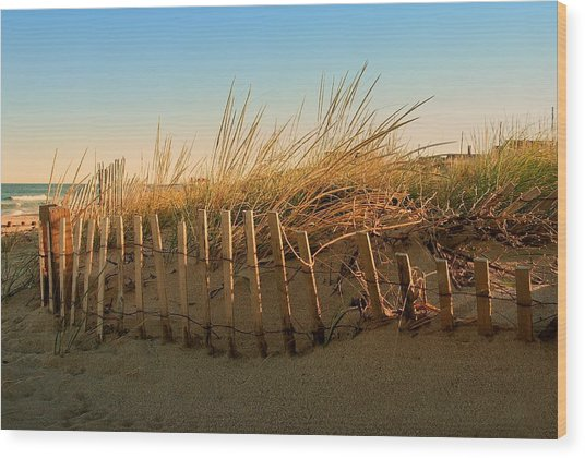 Sand Dune In Late September - Jersey Shore Wood Print