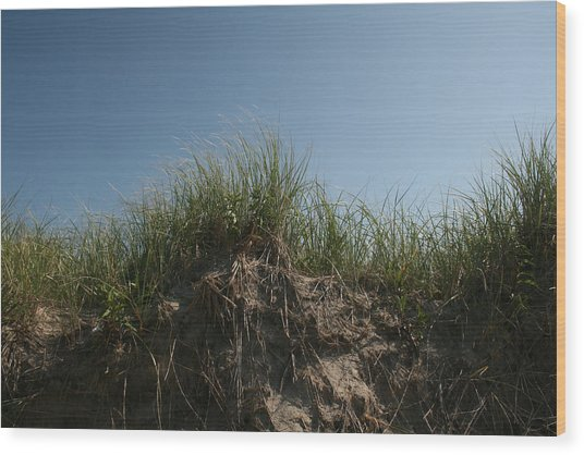 Sand Dunes IIi Wood Print by Jeff Porter