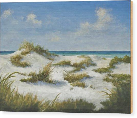 Sand Dunes Morning By Alan Zawacki Wood Print