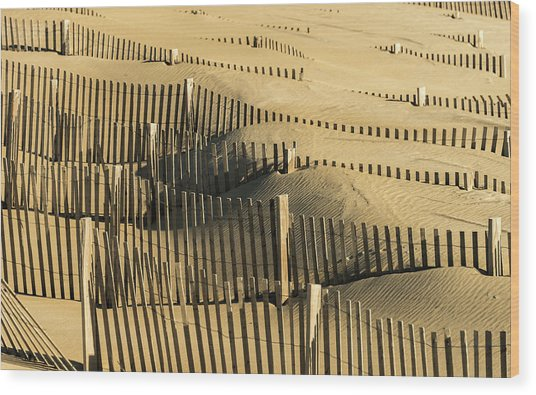 Sand Dunes Of The Outer Banks Wood Print