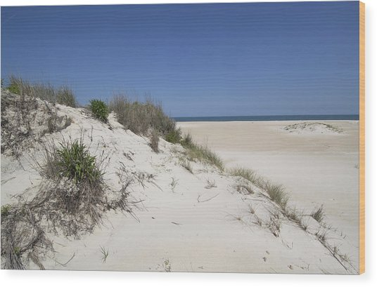 Sand Dunes On Assateague Island National Seashore - Maryland Wood Print by Brendan Reals