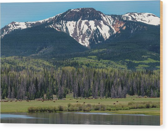 Sand Mountain From Steamboat Lake Wood Print