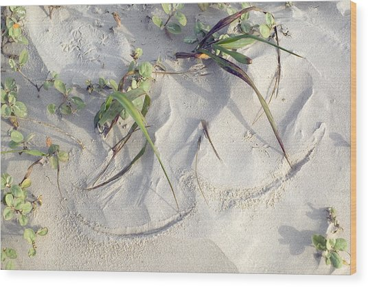 Sand Sumie One Wood Print by Clyde Replogle