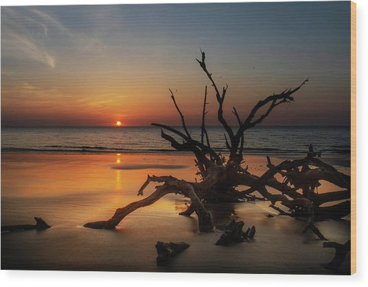 Sand Surf And Driftwood Wood Print