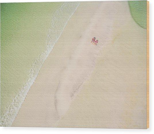 Sandbar Time Wood Print
