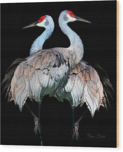 Sandhill Crane Mirror Image Wood Print