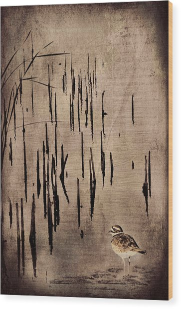 Sandpiper By The Lake Wood Print