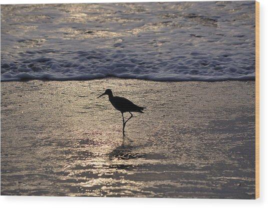 Sandpiper On A Golden Beach Wood Print