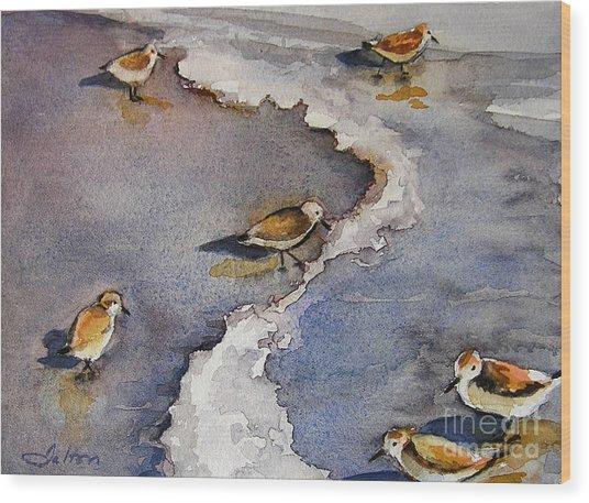 Sandpiper Seashore Wood Print