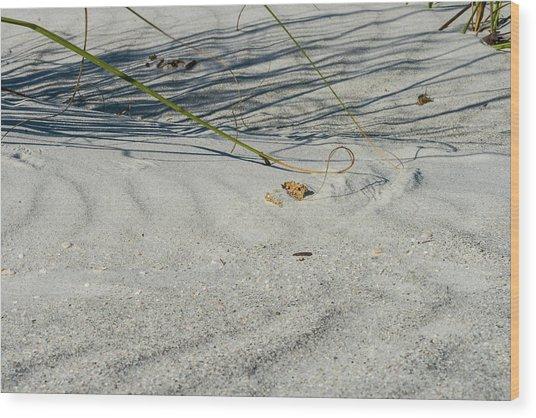 Sandscapes Wood Print