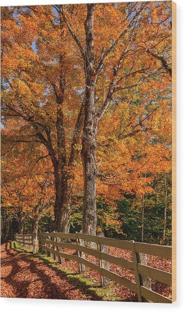 Sandwich Autumn Wood Print