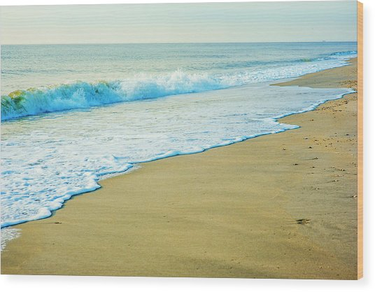 Sandy Hook Beach, New Jersey, Usa Wood Print