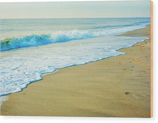 Sandy Hook Beach, New Jersey, Usa Wood Print