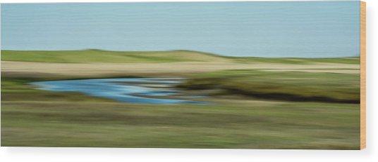 Sandy Neck Saltmarsh Wood Print