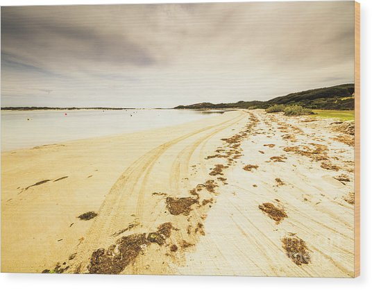 Sandy Tasmanian Shores Wood Print