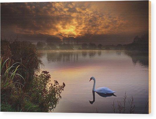Sandy Water Park 2 Wood Print
