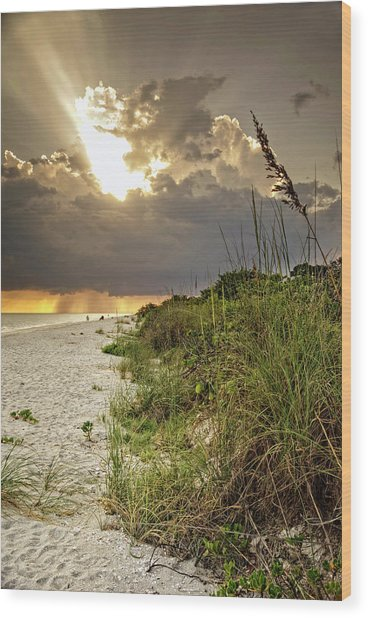 Sanibel Dune At Sunset Wood Print