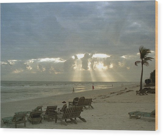 Sanibel Island Fl Wood Print
