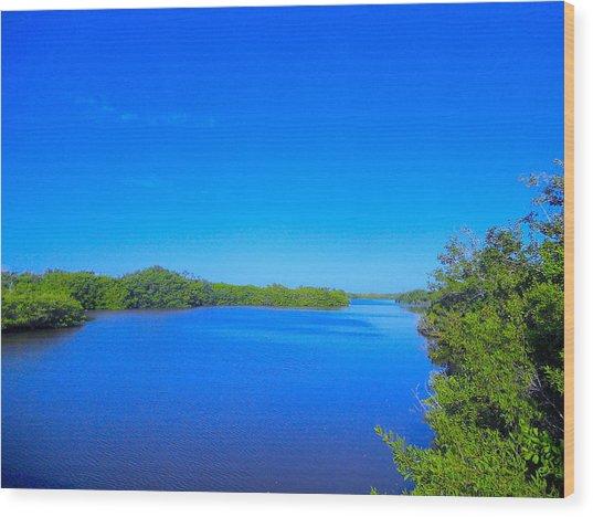 Sanibel Island, Florida Wood Print