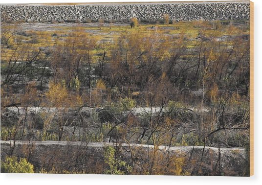 Santa Ana River Bed Wood Print by Viktor Savchenko