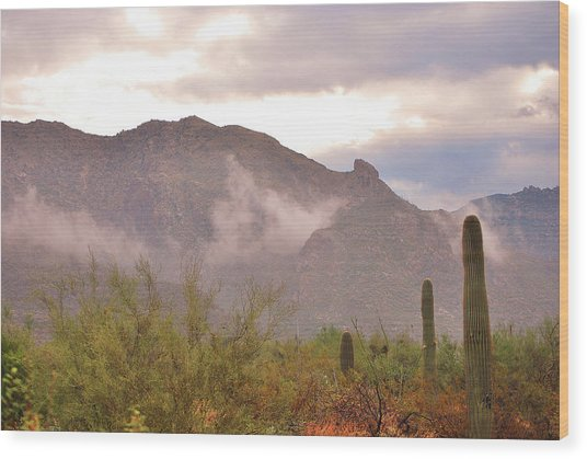 Santa Catalina Mountains II Wood Print