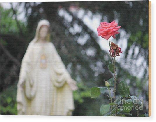 Santa Catalina Rose Wood Print