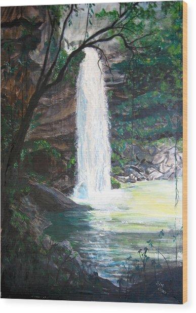 Santa Emelia Waterfall Wood Print