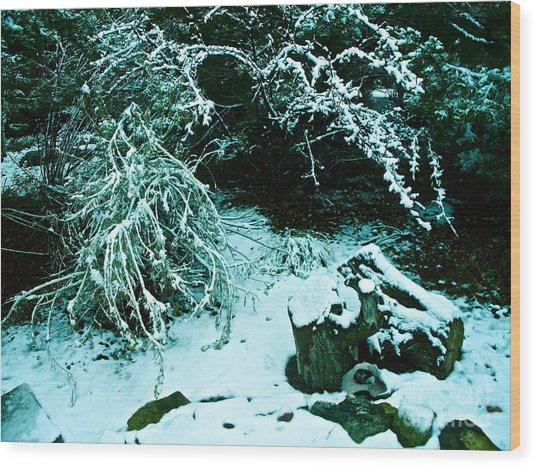Santa Fe Snow Wood Print by Chuck Taylor